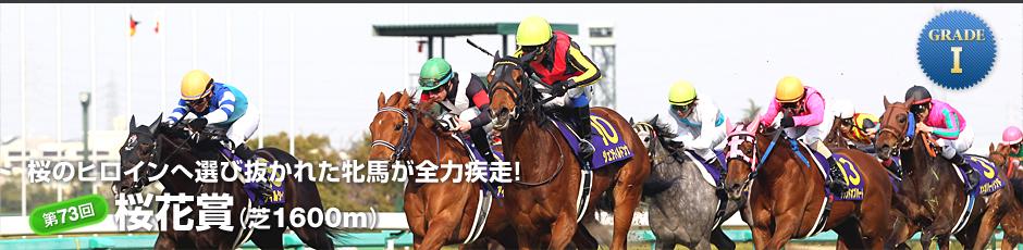 桜のヒロインへ選び抜かれた牝馬が全力疾走!「第73回桜花賞」