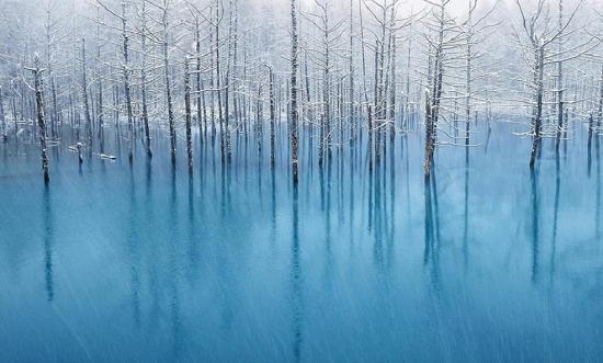 青い池_apple