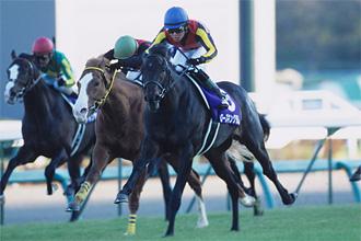 2009朝日杯